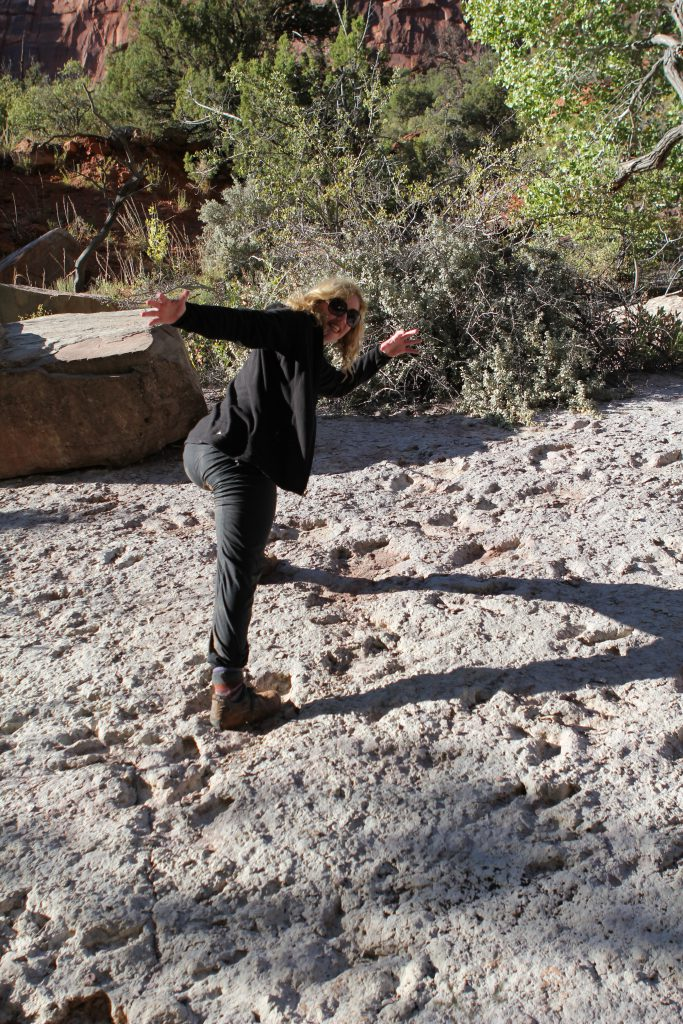 Brandy Little & Dinosaur Tracks photo by Erin Byrne