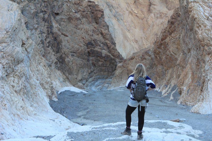 Brandy in Death Valley. Photo by Barbara Little.