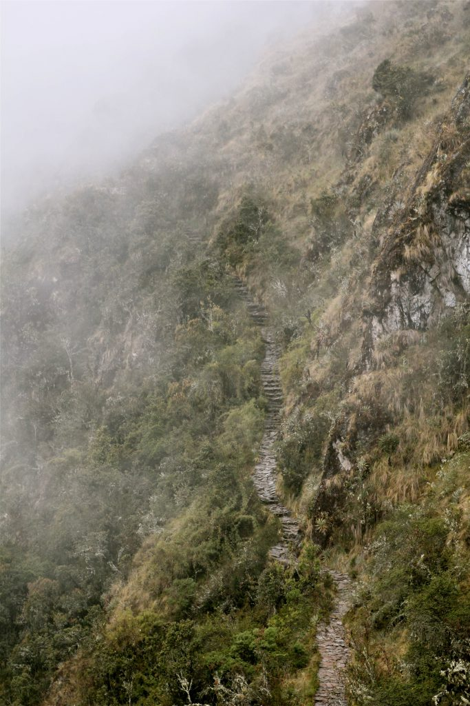 Inca Trail. Photo by Brandy Little.