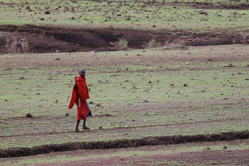 Masai tribesman in the Serengeti. Photo by Brandy Little.