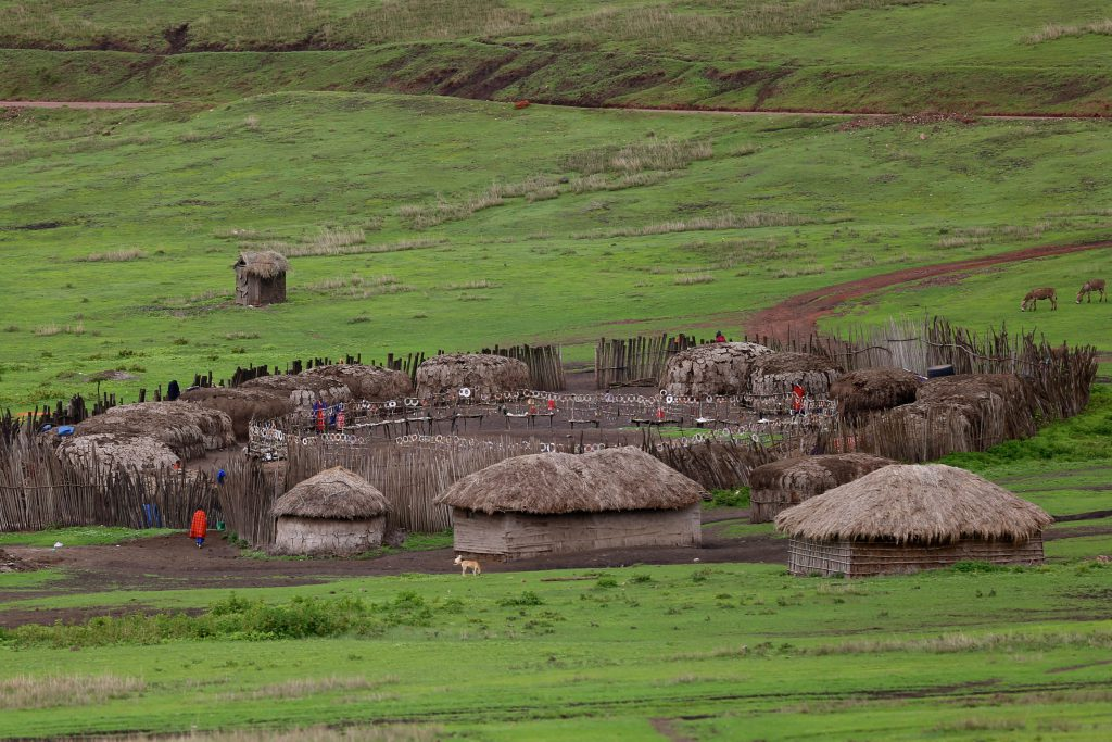 A Masai Village nestled in a hill in the Serengeti National Park. Photo by Brandy Little.