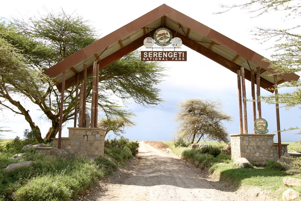 Entrance to the Serengeti, photo by Brandy Little