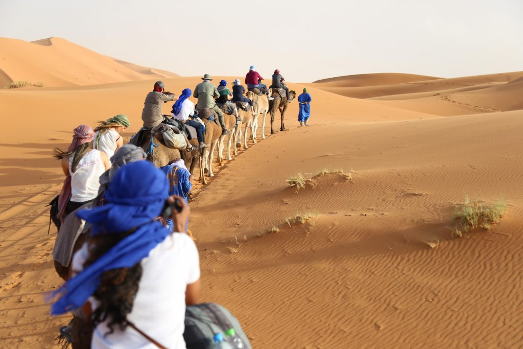 Camel caravan in the Sahara desert photo by Brandy Little