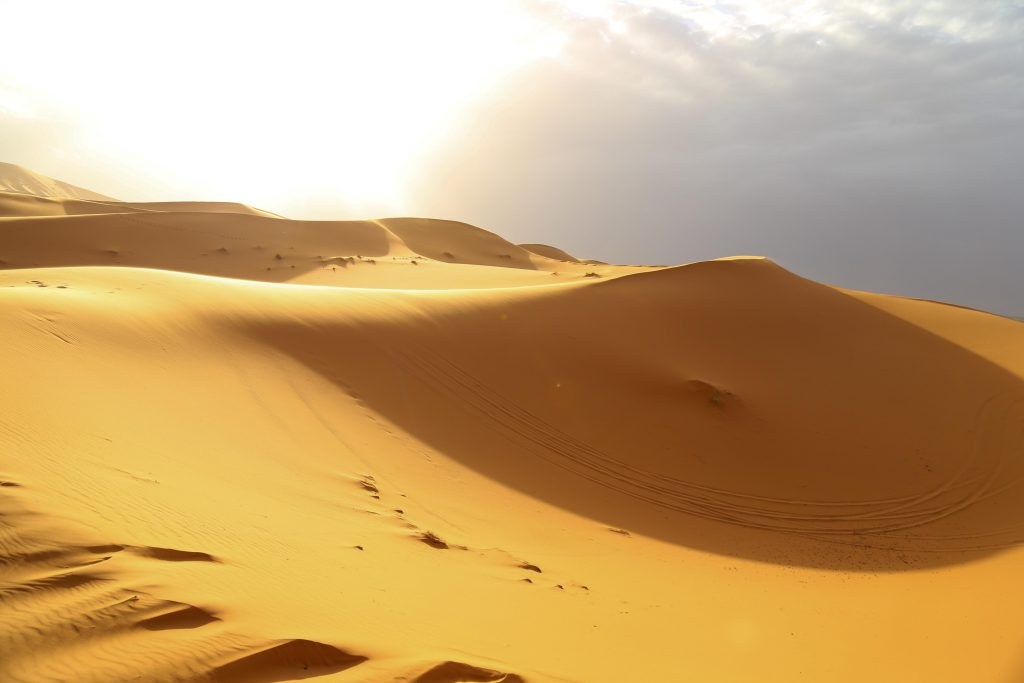 Sahara desert photo by Brandy Little