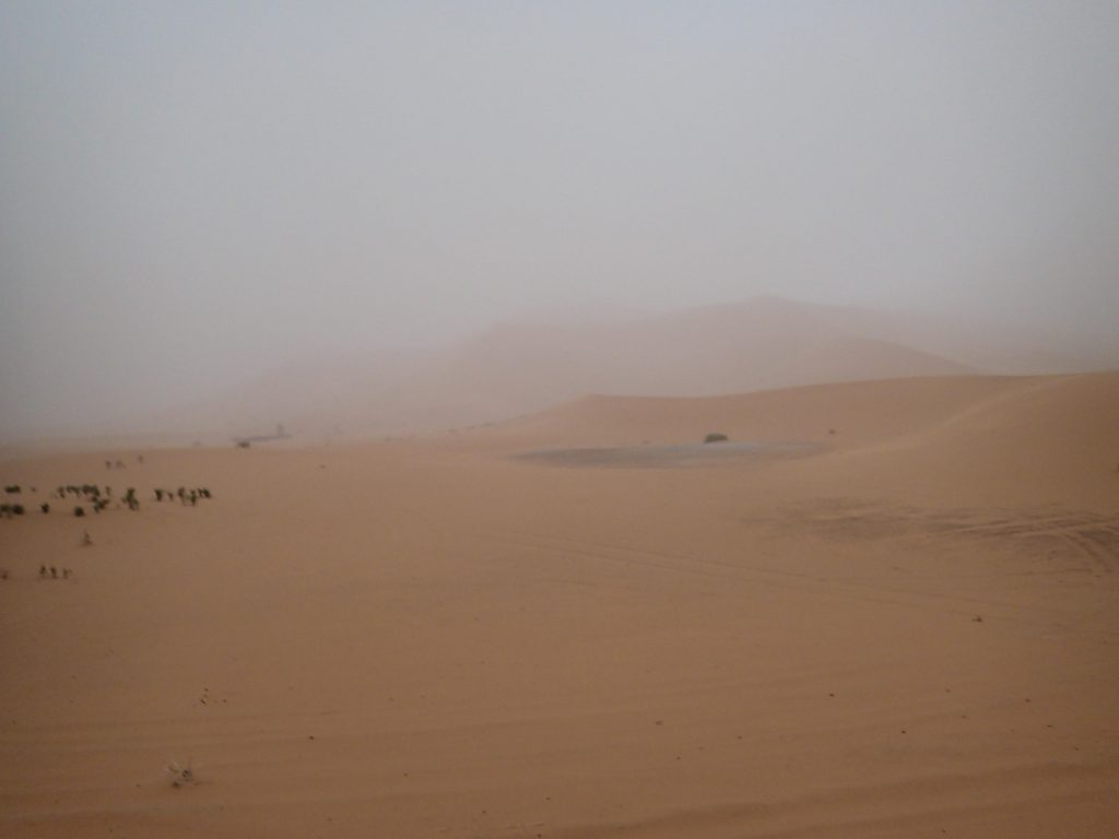 Sahara desert sandstrom photo by Brandy Little